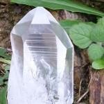 Lemurian seed crystal generator