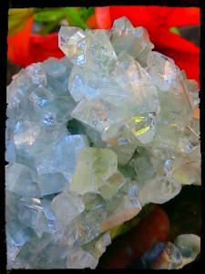 Apophyllite cluster cu