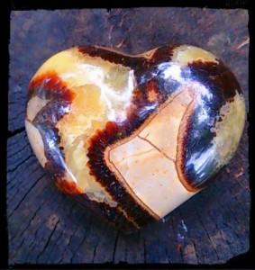 septurian heart