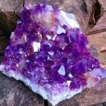 lg amethyst cluster1